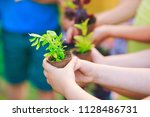 people hands cupping plant... | Shutterstock . vector #1128486731