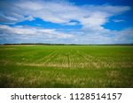 green field and sky with clouds ... | Shutterstock . vector #1128514157