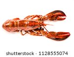 cooked lobster isolated on... | Shutterstock . vector #1128555074