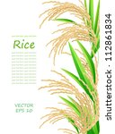 rice. spikelet of rice on a... | Shutterstock .eps vector #112861834