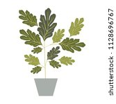 house plant in pot decorative... | Shutterstock .eps vector #1128696767