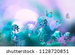 wild flowers in field in nature ... | Shutterstock . vector #1128720851