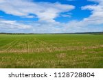 green field and sky with clouds ... | Shutterstock . vector #1128728804