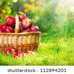 Organic Apples In A Basket...