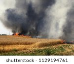 fires in israel that caused...   Shutterstock . vector #1129194761