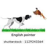 english pointer. pheasant... | Shutterstock .eps vector #1129243364