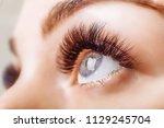 eyelash extension procedure.... | Shutterstock . vector #1129245704