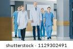 team of doctors  nurses and...   Shutterstock . vector #1129302491
