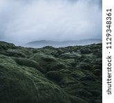 wide wild moss field in iceland ... | Shutterstock . vector #1129348361