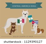 dogs by country of origin....   Shutterstock .eps vector #1129390127