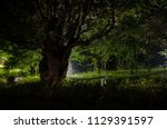 night fog in the village.... | Shutterstock . vector #1129391597