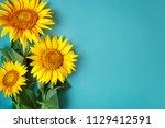 Beautiful Sunflowers On Blue...