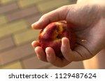 peach in hand  juicy fruit | Shutterstock . vector #1129487624