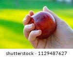 peach in hand  juicy fruit | Shutterstock . vector #1129487627
