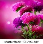 Stock photo aster autumn flowers art design 112953589