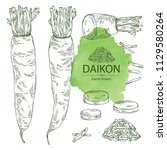 collection of daikon  root and... | Shutterstock .eps vector #1129580264