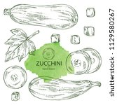 collection of zucchini  full... | Shutterstock .eps vector #1129580267