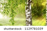 strong beautiful fog and... | Shutterstock . vector #1129781039