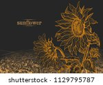 field of sunflowers and large... | Shutterstock .eps vector #1129795787