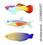 aquarium fish silhouette... | Shutterstock .eps vector #1129883357