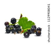 fresh  nutritious and tasty... | Shutterstock .eps vector #1129908041