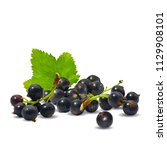 fresh  nutritious and tasty... | Shutterstock .eps vector #1129908101