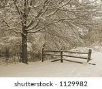 This is a sepia tone shot of a fence in a snowy woods. - stock photo