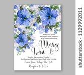 blue hibiscus tropical flower... | Shutterstock .eps vector #1129992011