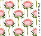 protea flowers. vector seamless ... | Shutterstock .eps vector #1129999967
