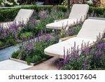 garden deck chair among the... | Shutterstock . vector #1130017604