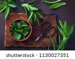 aloe vera on dark background  ... | Shutterstock . vector #1130027351