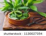 aloe vera on dark background  ... | Shutterstock . vector #1130027354