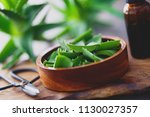 aloe vera on dark background  ... | Shutterstock . vector #1130027357