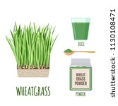 wheatgrass set with powder and... | Shutterstock .eps vector #1130108471