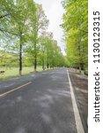 summer woods road  | Shutterstock . vector #1130123315