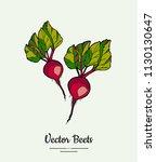 hand drawn vector illustration... | Shutterstock .eps vector #1130130647