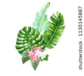 hand drawn watercolor tropical... | Shutterstock . vector #1130145887