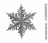 black snowflake on white... | Shutterstock .eps vector #1130203931