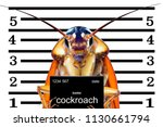 Image of cockroaches arrested...