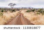 gravel road s114 in afsaal area ... | Shutterstock . vector #1130818877