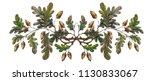 watercolor oak branch... | Shutterstock . vector #1130833067