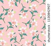 lilium candidum  the madonna... | Shutterstock .eps vector #1130842907