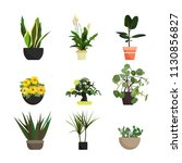 collection of vector... | Shutterstock .eps vector #1130856827