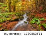 autumn stream in the forest ... | Shutterstock . vector #1130863511