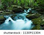 the beautiful waterfall in...   Shutterstock . vector #1130911304