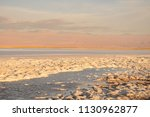 salar de atacama  in the... | Shutterstock . vector #1130962877