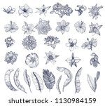 Stock vector large set tropical flowers and palm leaves isolated on white background hand drawing vector 1130984159