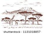 vintage african landscape.... | Shutterstock .eps vector #1131018857