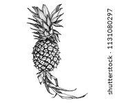 juicy tropical pineapple fruit... | Shutterstock .eps vector #1131080297