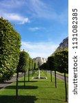 tree lined esplanade in... | Shutterstock . vector #1131082385